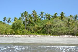 An uninhabited island in the Gulf of Nicoya - a formal penal colony!