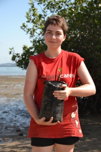 Clare Mangrove Plant